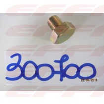 300700 - BUJAO DO CARTER
