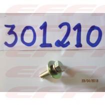 301210 - PARAFUSO DE FIXACAO DO ASSOALHO - HAFEI